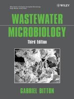 Wastewater Microbiology. 3rd edition